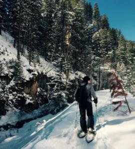 BLOG snowshoeing