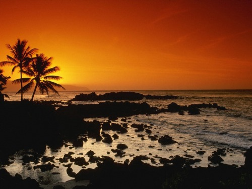 Blog sunrise Hawaii 1