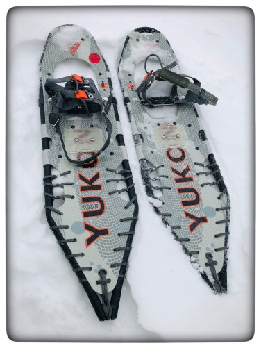 blog snowshoeing shoes