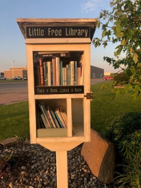 Blog Against all odds little library