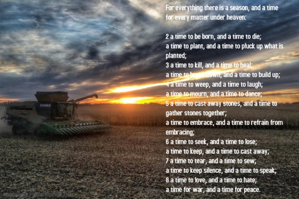 Blog Harvest Tractor Eccl.