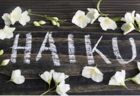 Blog Haiku